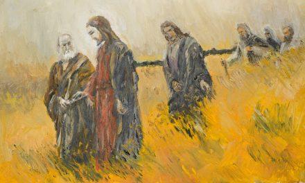V Domingo de Cuaresma – Si el grano no muere