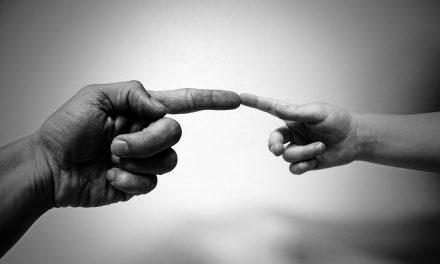 Busquemos la perfección del Padre – Homilía dominical