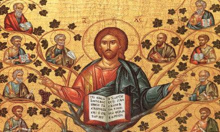 V Domingo de Pascua – La vid y los sarmientos