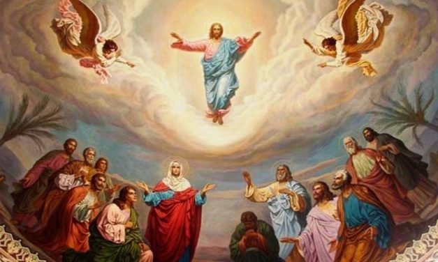 VII Domingo de Pascua – La ascensión del Señor