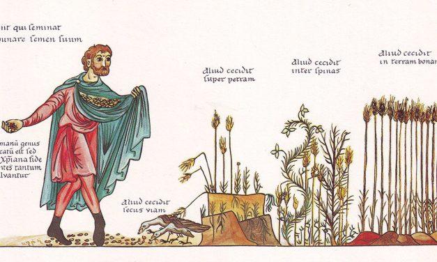 La semilla que crece día y noche y el grano de mostaza